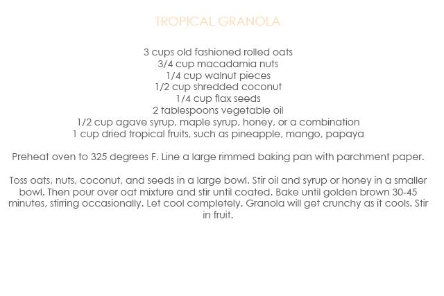 granola copy2