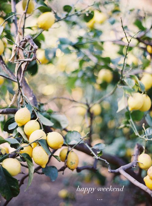 lemons1 copy